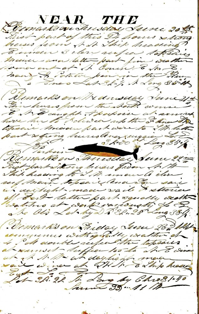 Printed matter - Handwriting - Whaling log book, The Daniel Webster 1850s-635x1000